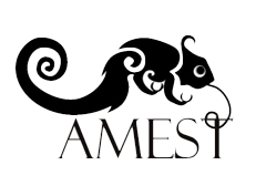 IV Coloquio AMEST 2015_para web